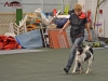 obedience-appia-21112013-2