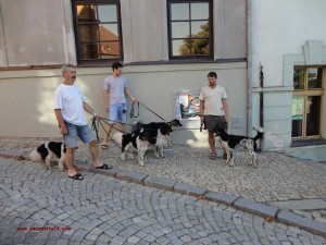 Hajanek-s-rodinou-7-2013-1