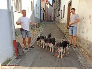 Hajanek-s-rodinou-7-2013-3
