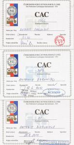 vvstavy-tessy-CAC