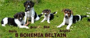 B Bohemia Beltain