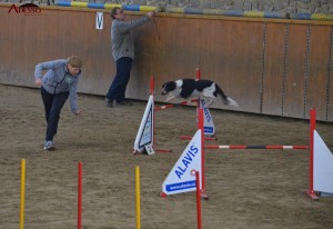 Agility Heroutice 1402 2014 61
