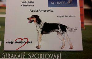 appia-ob-prac-csp